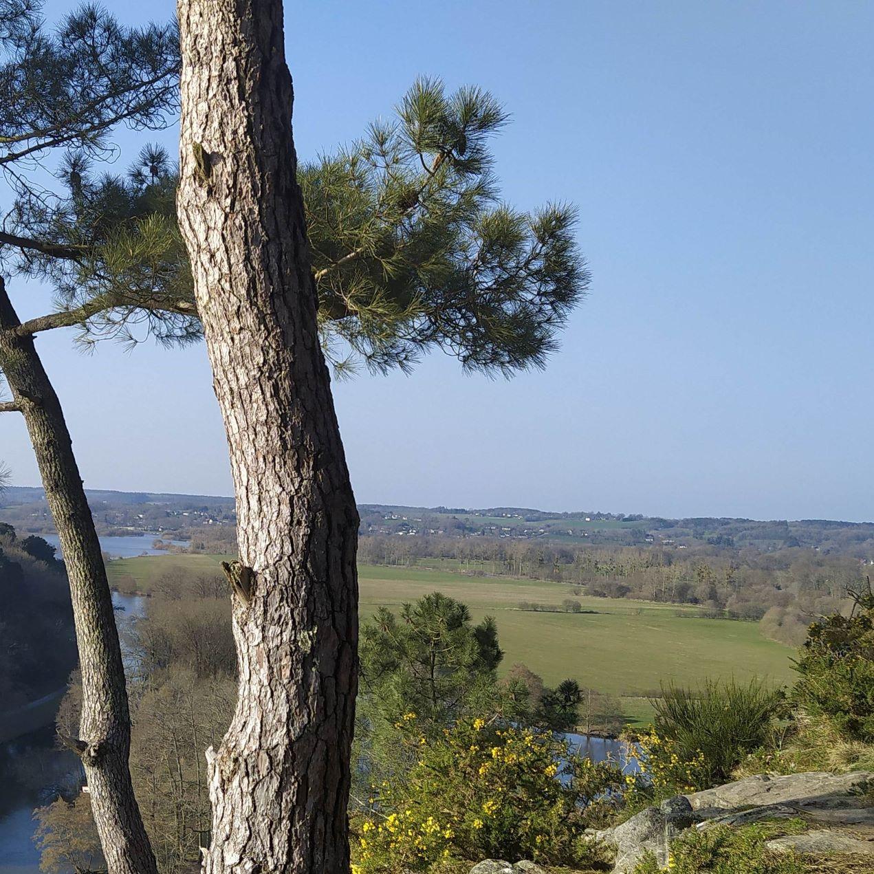 ¨Point de vue à l'île aux pies, Bains sur Oust