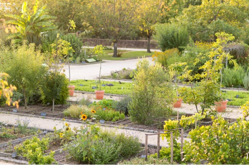 Jardin Botanique Yves Rocher - E Berthier